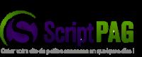 Problèmes et solutions sur Script-Pag